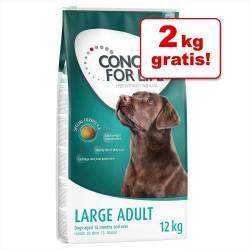 12 kg Adult Large Light Concept for Life Hundefoder
