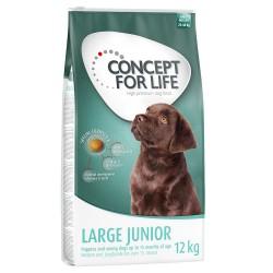 1,5kg Large Junior Concept for Life Hundefoder