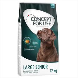 6 kg Large Senior Concept for Life Hundefoder