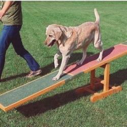 Agility vippe - balance bom til hunde