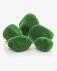 Biorb Akvariesten, naturligt look - Grøn mos