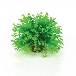 Biorb Dekoration / Blomsterkugler - grøn m.hvide blomster