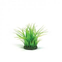 Biorb Dekoration / græs ring