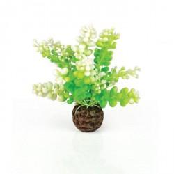 Biorb Dekoration, Lille boblebladet plast plante