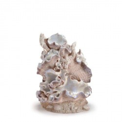 Biorb Ornament, smuk Muslinge skulptur med perler - Large