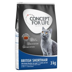 Concept for Life British Shorthair Adult - Supplement: 12 x 85 g Concept for Life British Shorthair Ragout