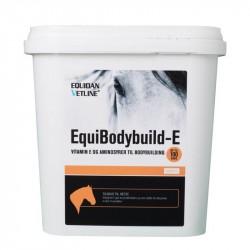 EquiBodybuild-E - Bodybuilder