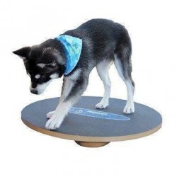 FitPAWS Wobble Board, 90 cm