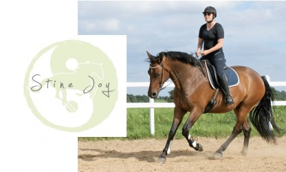 Foredrag om ryttercentrering v./ Stine Joy DEL 1