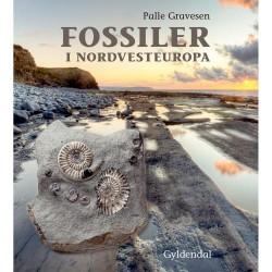Fossiler i Nordvesteuropa - Indbundet