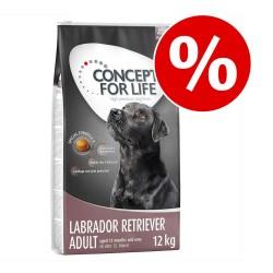 Månedens foder: Concept for Life hundetørfoder til særpris! - 4 kg Mini Adult