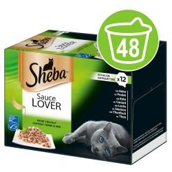Økonomipakke: 48 x 85 g Sheba bakker ''Uimodståelige varianter'' - Selection i sovs