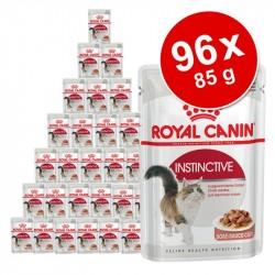 Økonomipakke: 96 x 85 g Royal Canin vådfoder - Indoor Sterilised i gelé