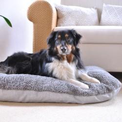 Pawz & Pepper Hundepude Denver Ortho M: 80x60x15 cm