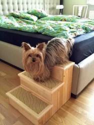 Petstair hundetrappe