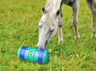 Pipolino XL Horse/Pony - Foderaktivering til heste