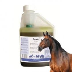 ReVet olietilskud til heste med ledproblemer